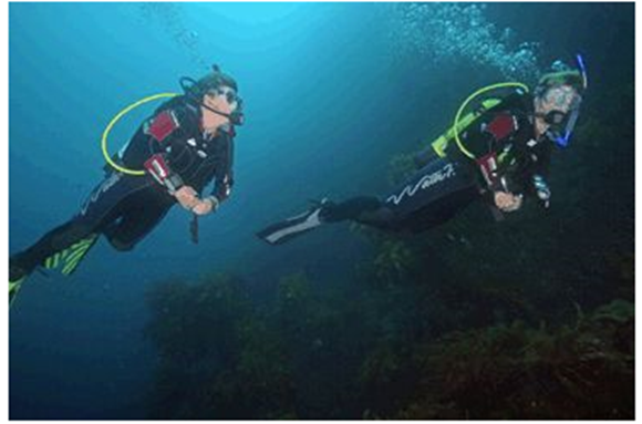 Picture of Open Water Scuba Diving Course