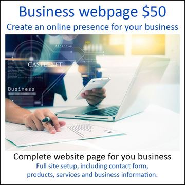 Picture of Business Webpage T$50