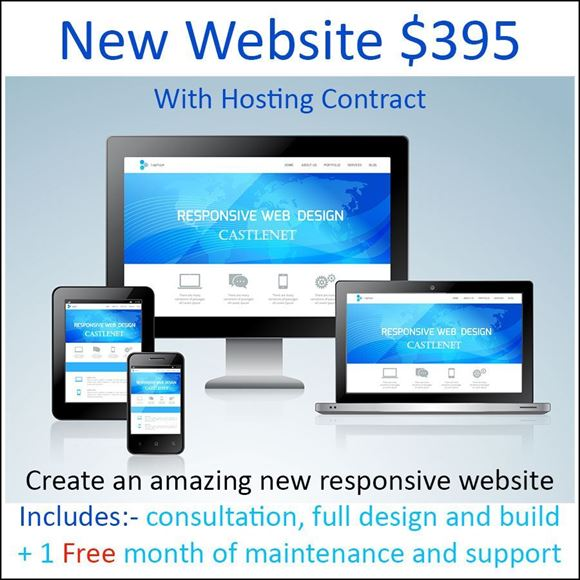 Picture of Full website development T$395