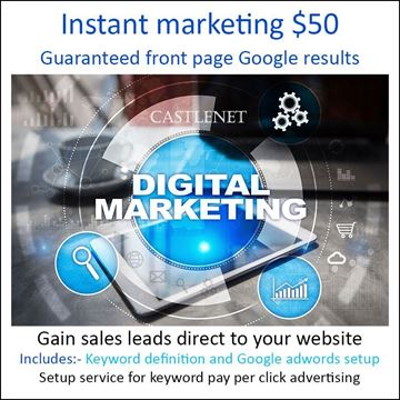 Picture of Google adwords setup T$50