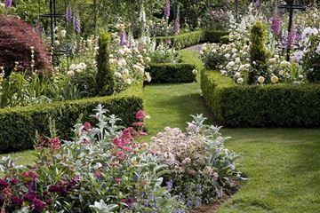 Picture of Chris Paul Landscape Design