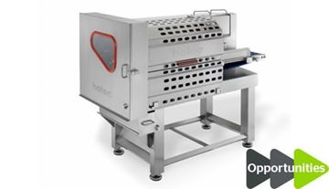 Picture of Holac BS28 Continuous Strip Cutter and Slicing Machine